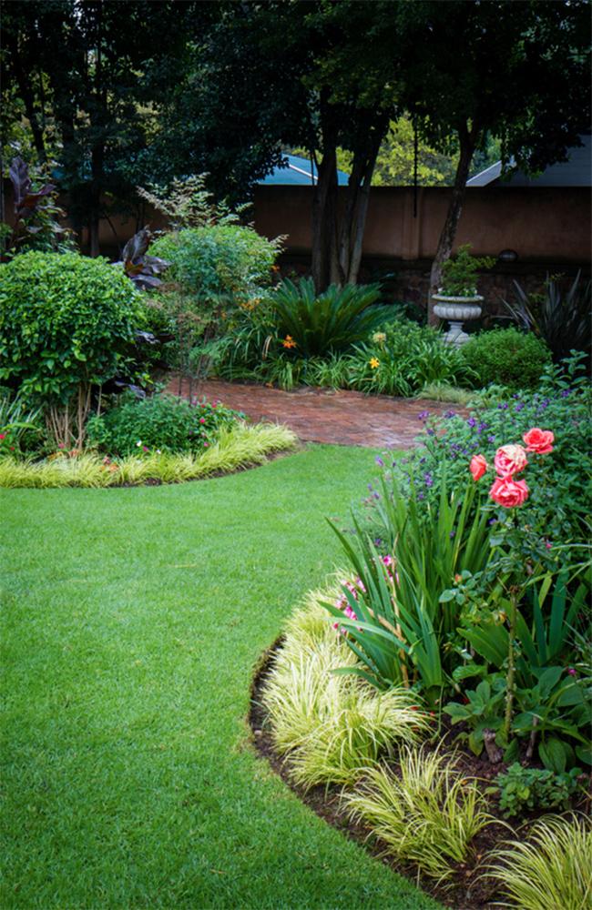 shrubs-image-9