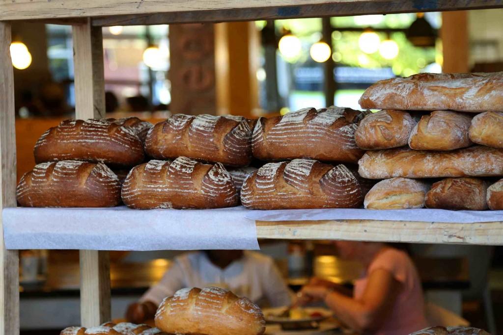 Knead-Bread