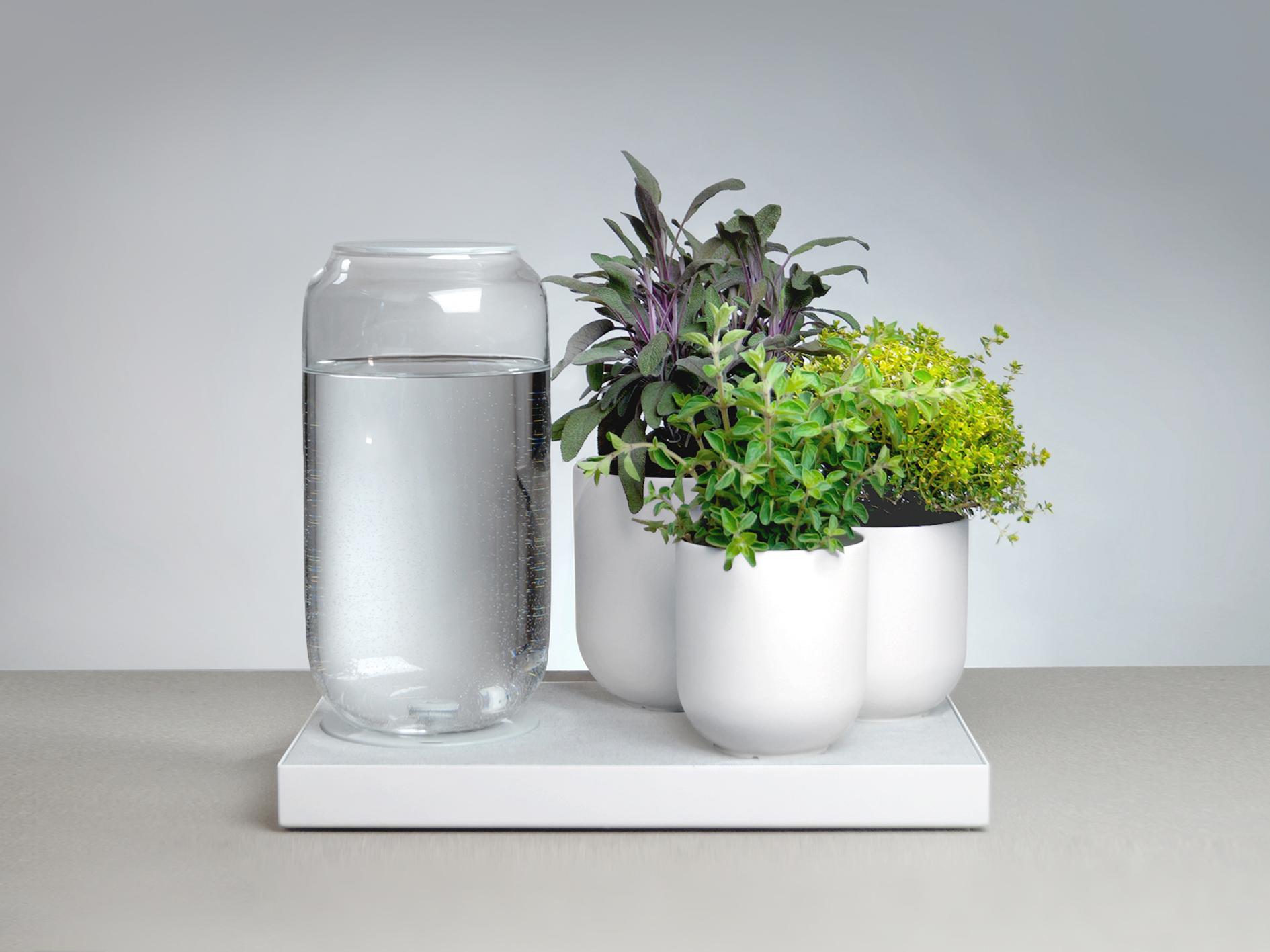 Tableau_Automatic_Houseplant_Watering_Tray_Pikaplant_White_01