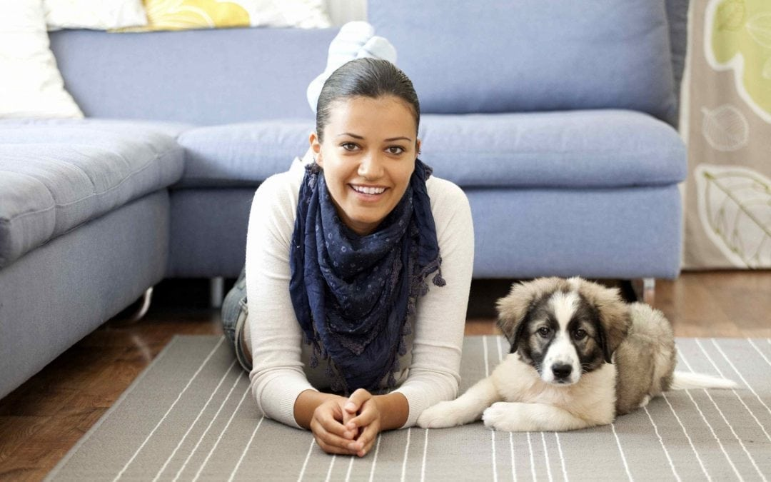 Keep Pets in Check at Pet-Friendly Developments