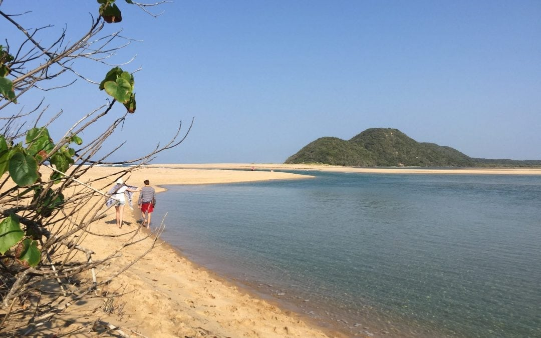 Kosi Bay: Nature's Playground