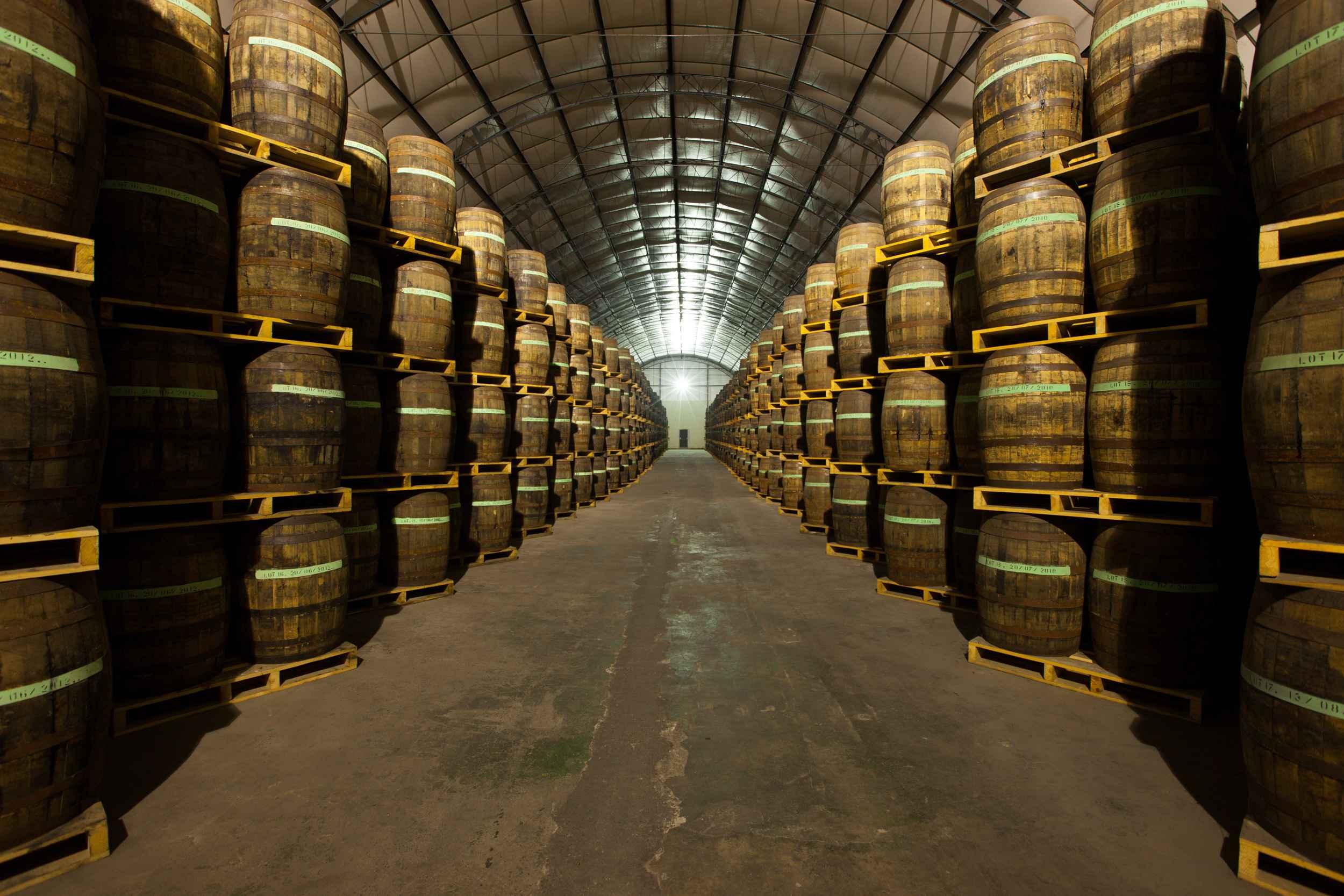 Brandy Homes - Maturation Cellar 1 (HR)-compressed