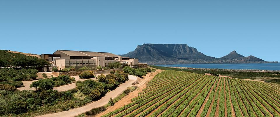 Durbanville Hills Wine Estate