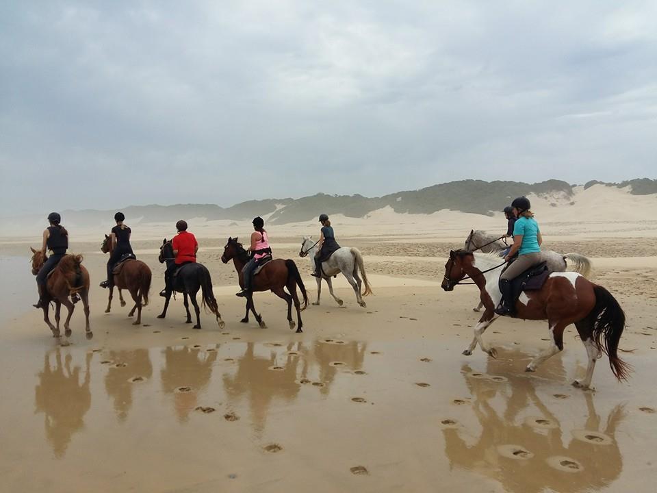 Horseriding in PE