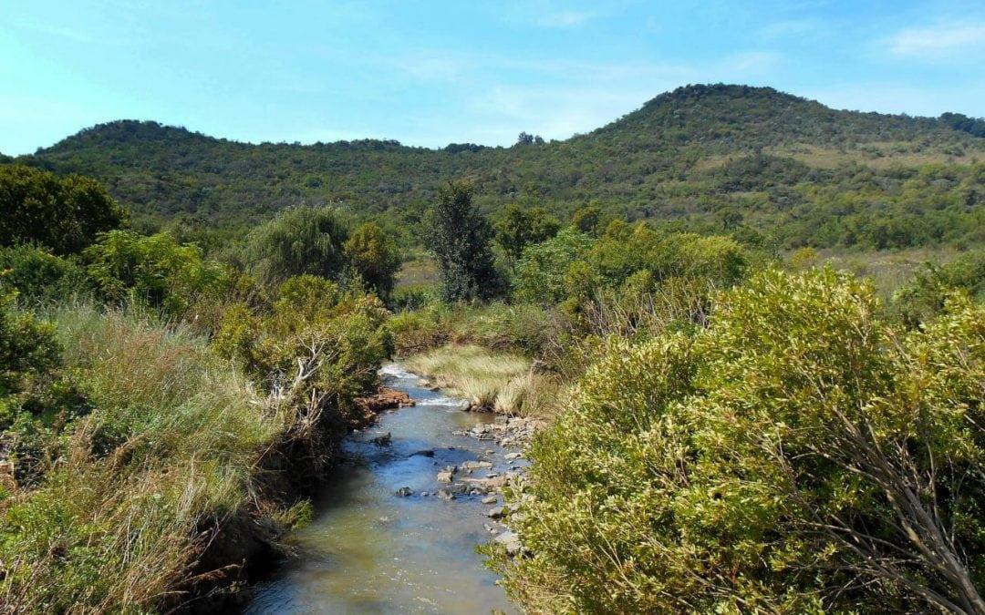 Faerie Glen – Pretoria