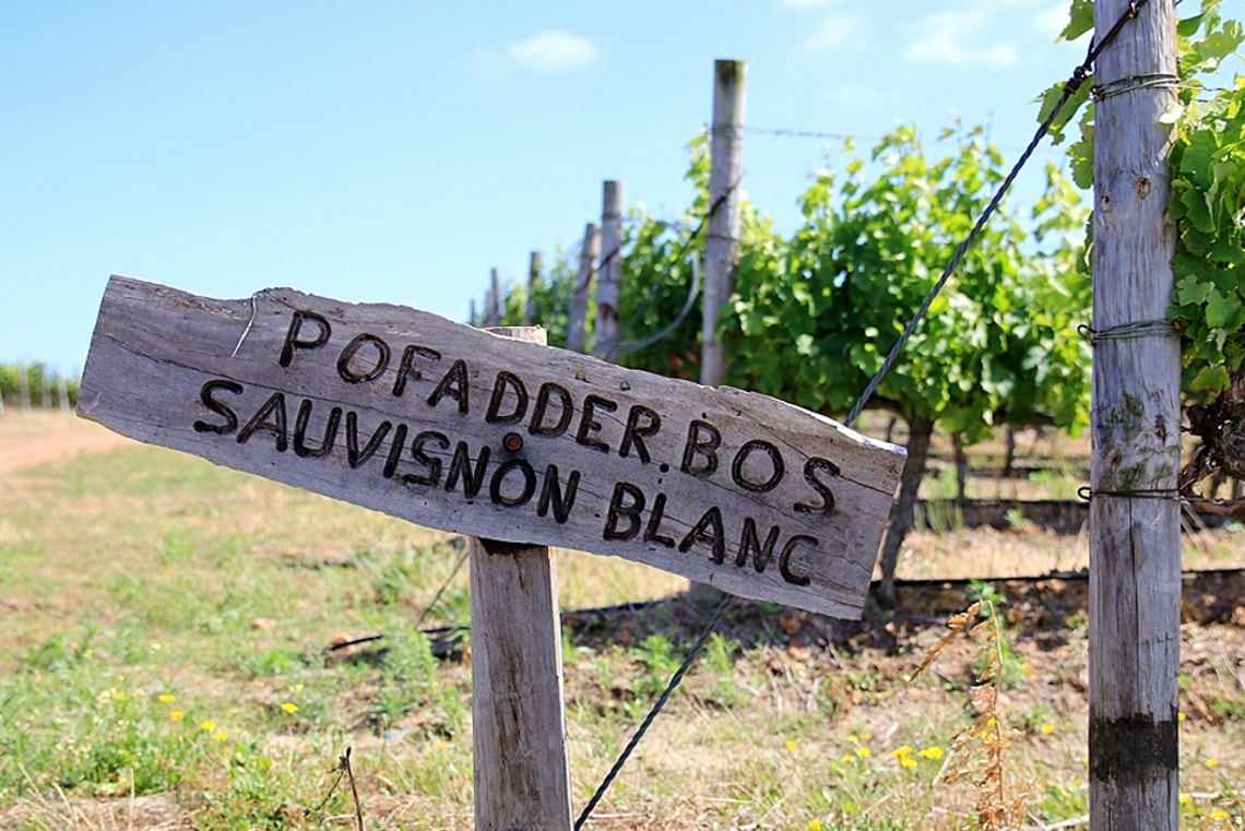 Pofadderbos Sauvignon Blanc HR-min