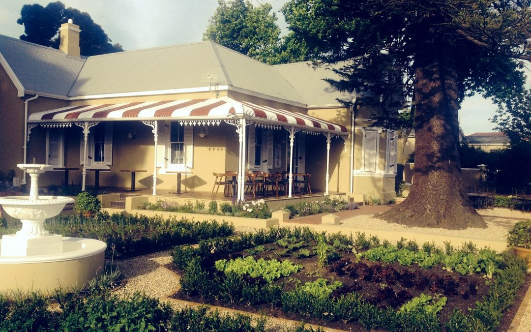 Lunch time fair at Carne Constantia