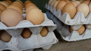 Pastured eggs-min