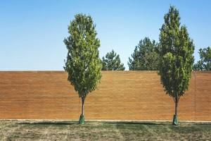 bricks-wall-garden-trees