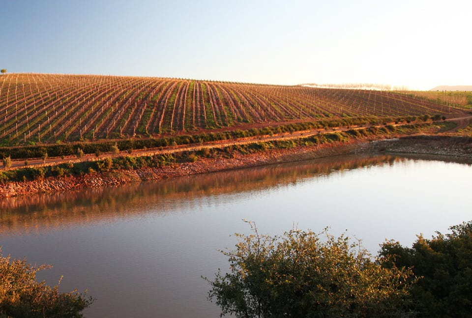 Gabrielskloof reveals The Landscape series of wines in Overberg