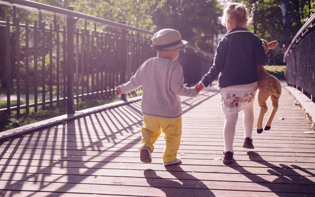 Winelands: Kid-friendly Activities