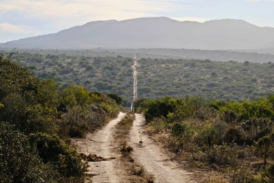 Game Reserves in the Eastern Cape and Garden Route