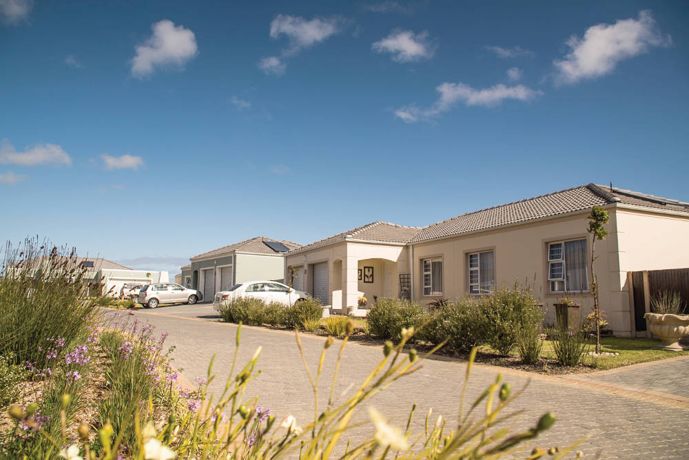 Port Elizabeth: Hot Properties