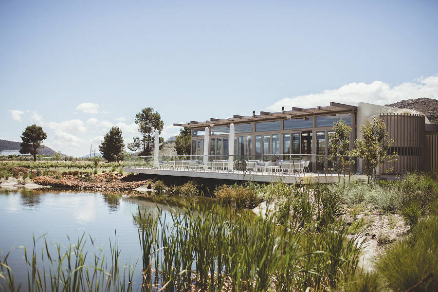 Travelling free: Paserene Wines in Franschhoek