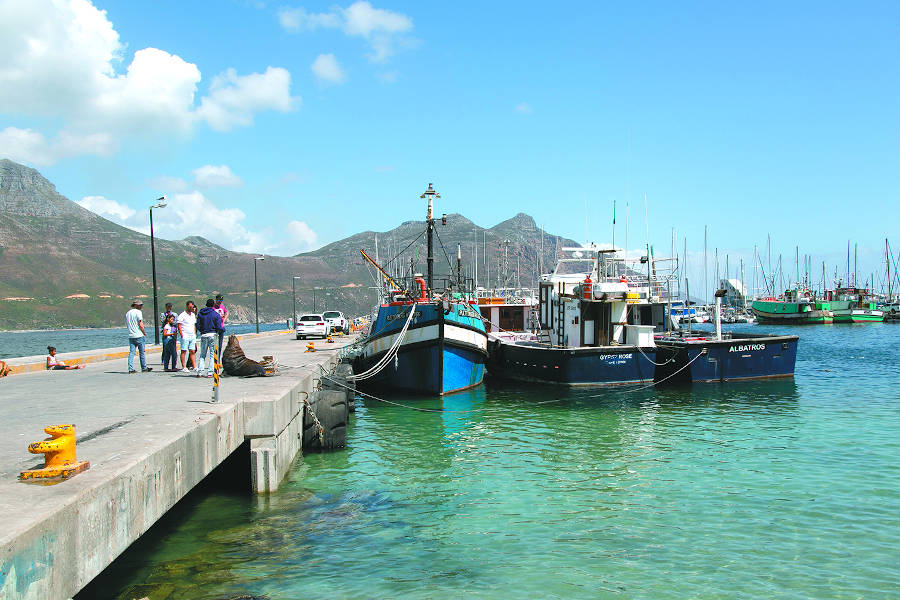 Suburb focus: Hout Bay
